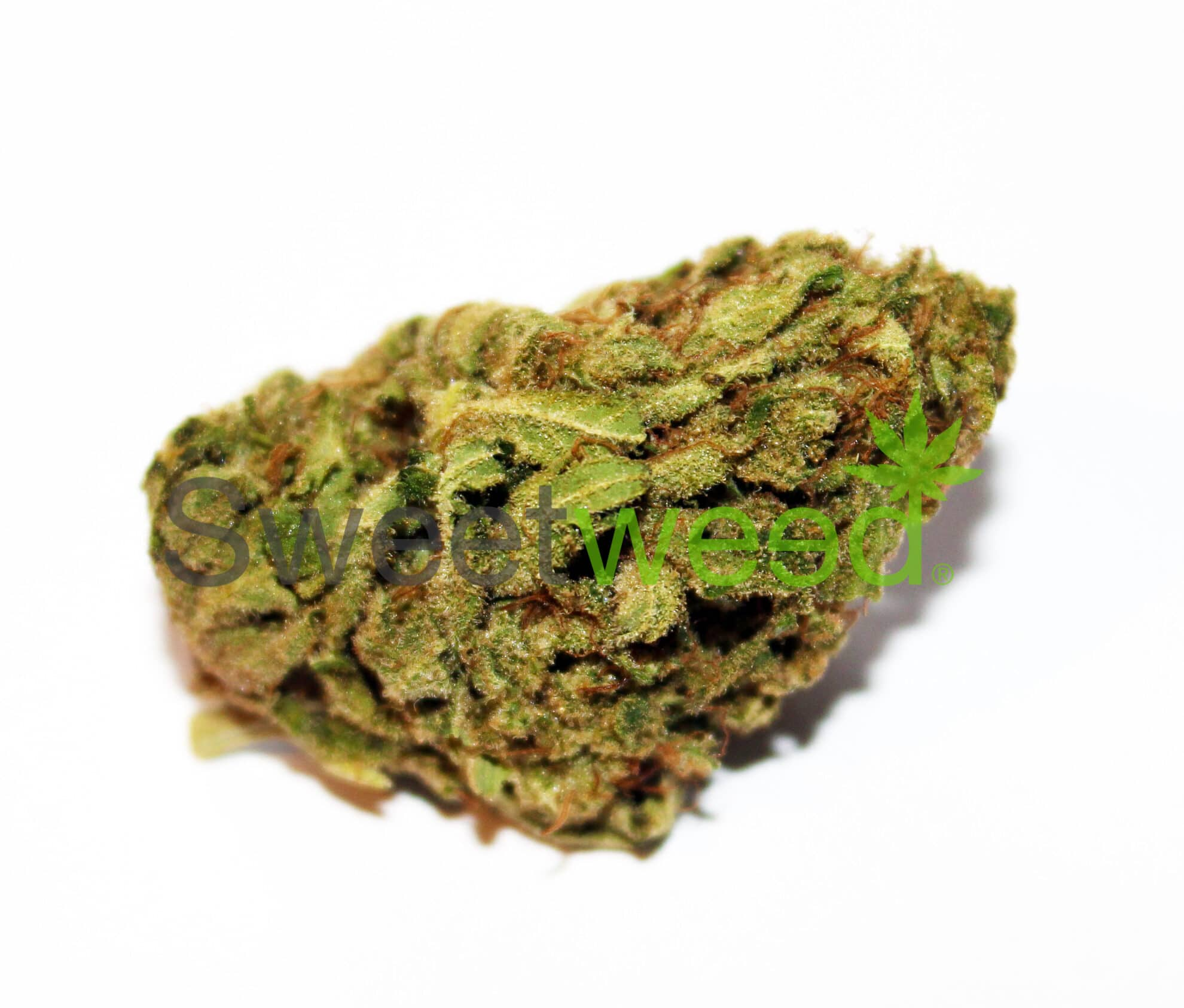 >0.2% THC