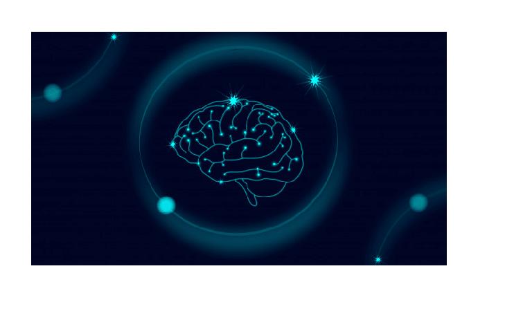 Les effets du CBD sur le cerveau 1
