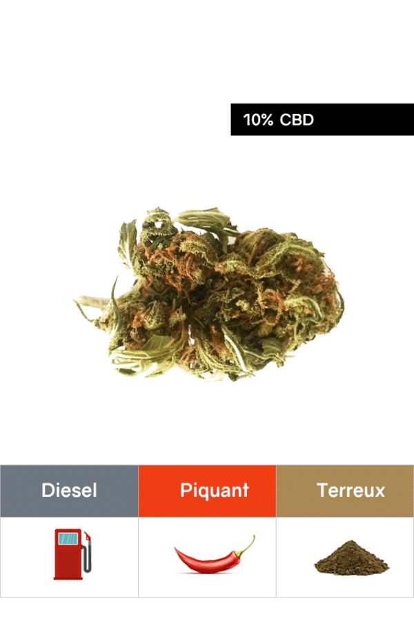 Fleurs CBD Sour Diesel 1