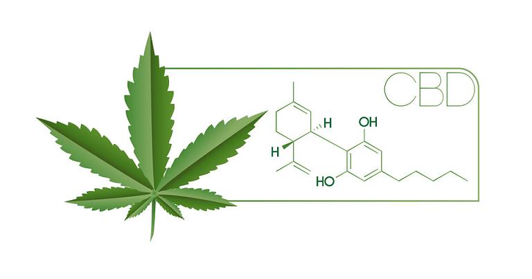 Quelle différence entre CBD et THC ? 1