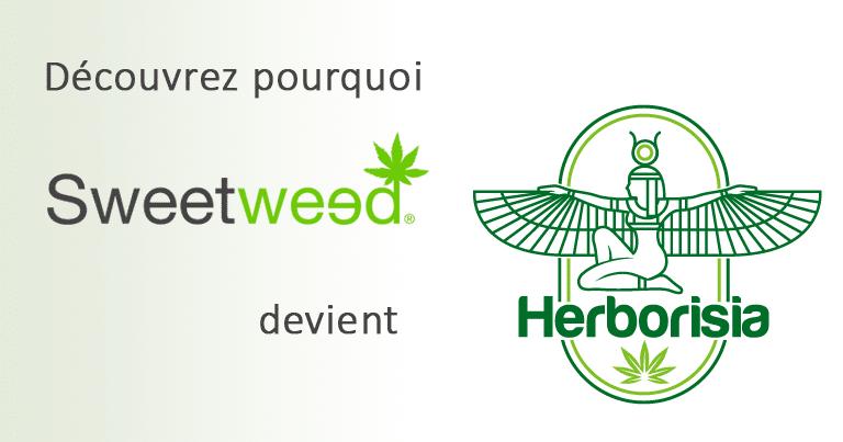 Sweetweed devient Herborisia. Découvrez pourquoi. 2