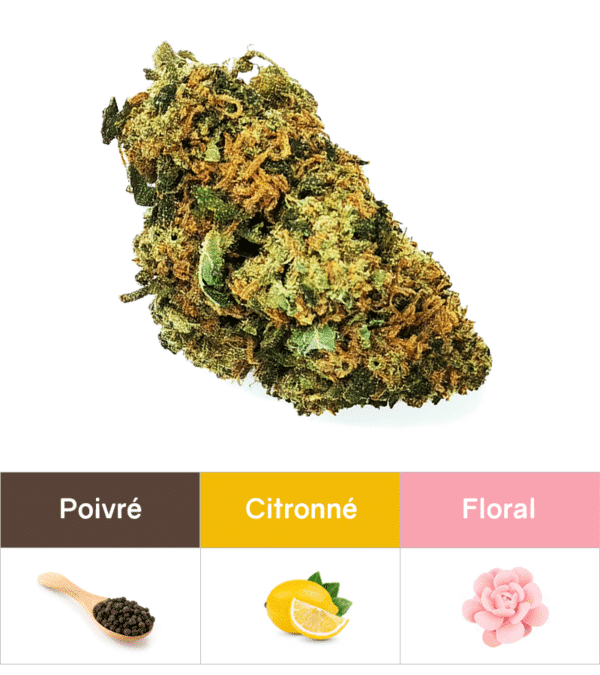 Fleurs CBD Bubba Kush 1