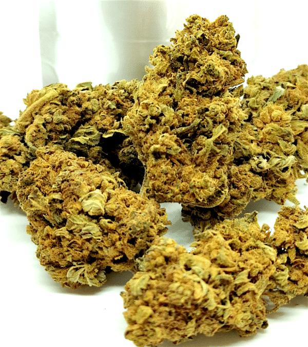 Fleurs CBD Gorilla Glue 4