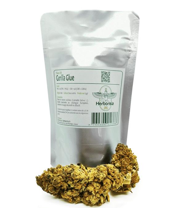 Fleurs CBD Gorilla Glue 5