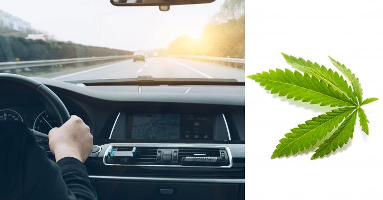 Conduire sous CBD, quels sont les risques? 8