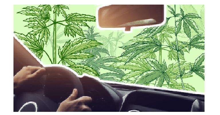 Conduire sous CBD, quels sont les risques? 1
