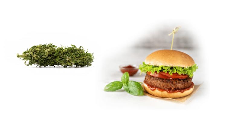 Gastronomie : recette du Cheese Burger Deluxe aux fleurs de CBD 1