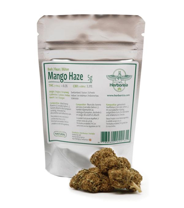 Fleurs CBD Mango Haze 3